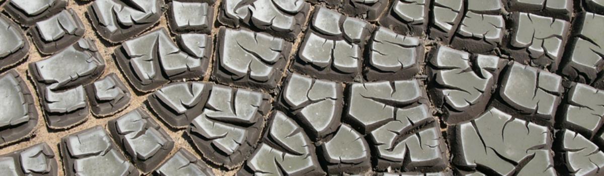 Kaly z čistíren jsou cenným hnojivem, všechny by ve spalovně skončit neměly
