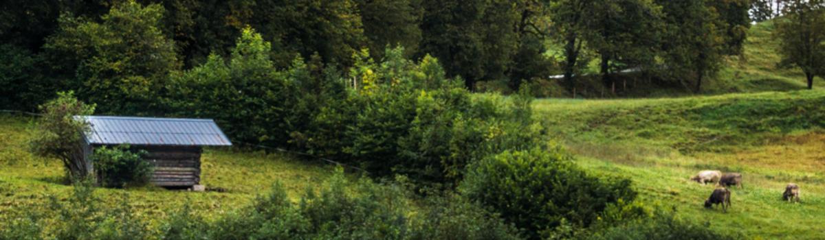 Zkušební provoz prověří vturistické sezoně novou čistírnu vBorových Ladech